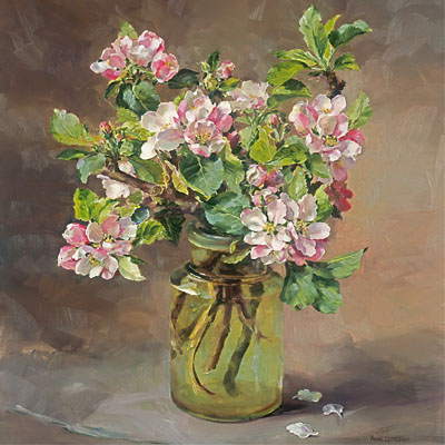 Apple Blossom Flower Card by Anne Cotterill