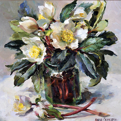 White Hellebores Christmas Card