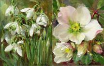 Snowdrops / Christmas Roses small note cards by Anne Cotterill Flower Art