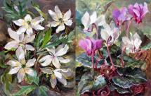Cyclamen / Wood Anemones note cards by Anne Cotterill Flower Art